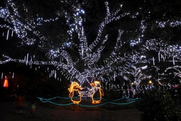 Christmas Under The Oaks.Celebration In The Oaks To Begin Friday Mid City Messenger
