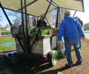 Grow Dat farm shares support local teens